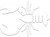 Lobster Vector PNG.png