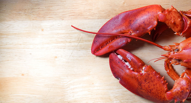 lobster%20on%20wood%20table_edited.jpg
