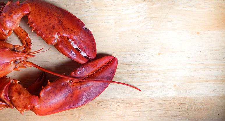 lobster on wood table.jpg
