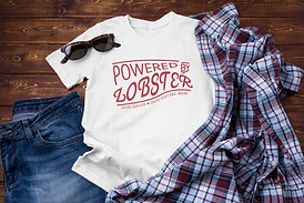 powered by lobster flannel on floor mock