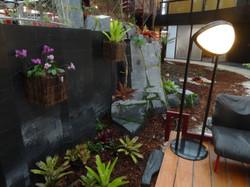 Orchidées et broméliacées