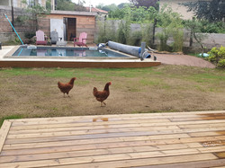 Après - zone piscine 2