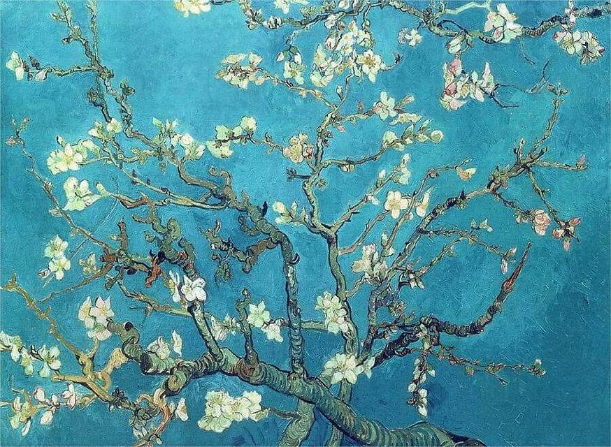 almond-blossom.jpg
