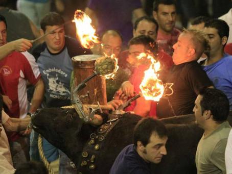 Otra Parla contra la vuelta de el toro embolado en Madrid