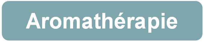 Aromathérapie - Diffusion - Maison Saine