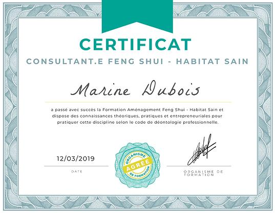 Certificat Formation FS - HS.png