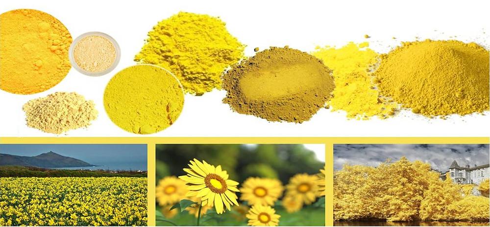 pigment naturel jaune décoration tendance
