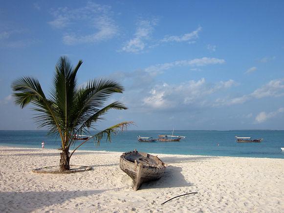 Beyonf Adventures Safaris Zanzibar Island