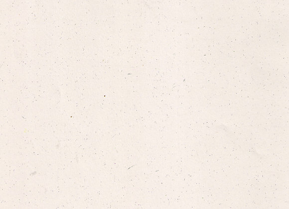Metaphor Speckled Ivory A4 100gsm 100 sheets