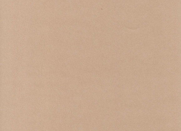 Cocoa Shell Graphics Paper A4 120gsm 100 sheets