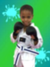 Karate Kid website.jpg