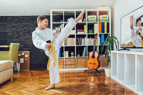 Taekwondo Zoom Live Classes.jpg