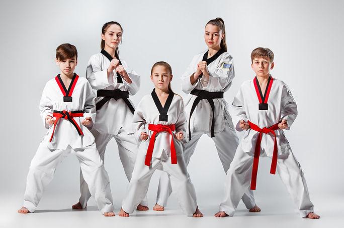 Beginners Martial Arts Bexleyheath, Bexleyheath Taekwondo