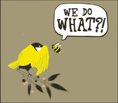 Pic by Access Consciousness - Bird & The Bees