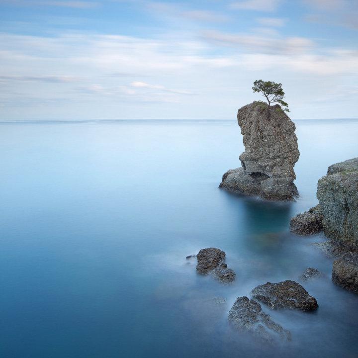 Pine Tree Rock in Portofino