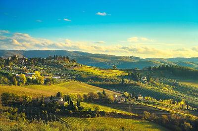 Panzano in Chianti Vineyards Panoramic View