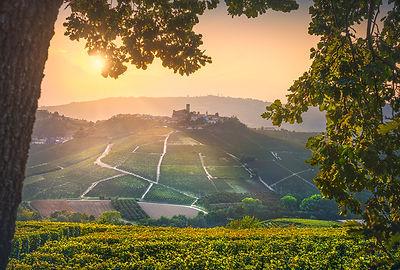 Castiglione Falletto Sunset