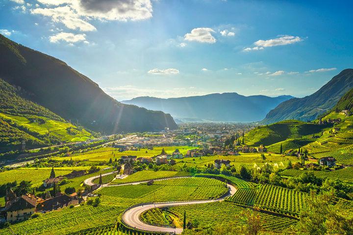 Vineyards in Santa Maddalena Bolzano