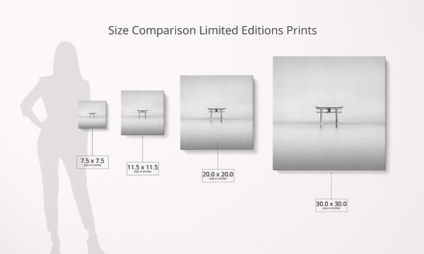Size Comparison Limited Editions.jpg