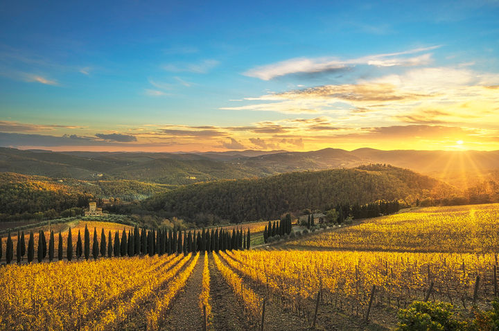 Sunset over the Vineyards of Radda in Chianti