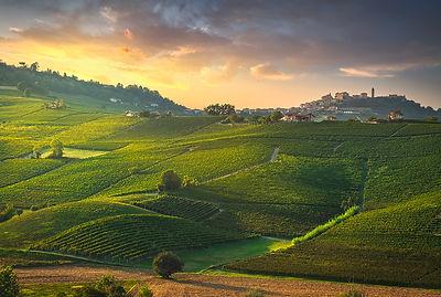 La Morra Vineyards Sunset
