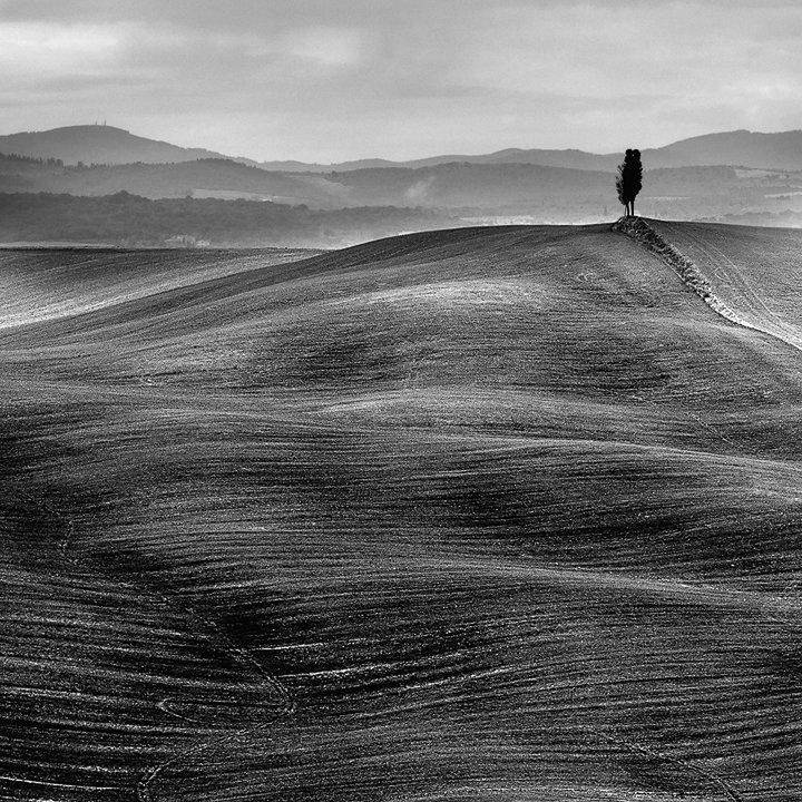 Tuscany Dunes (2008)