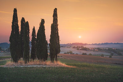 Last Light of the Day in Maremma