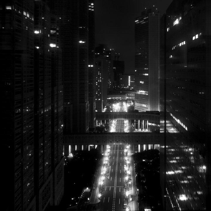 Tokyo Night through a Glass (2010)