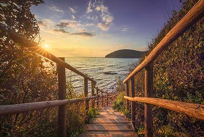 Descent to the sea. Cala Violina beach