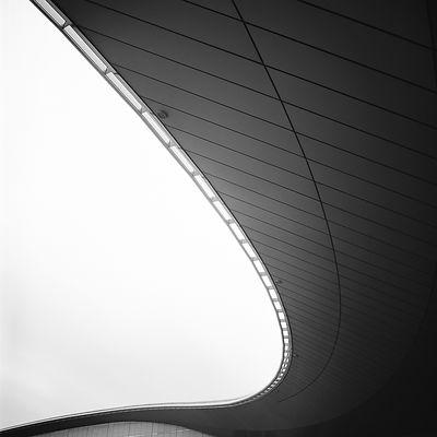 Seductive Ceiling (2010)