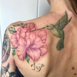 Colibri Hibiscus.JPG