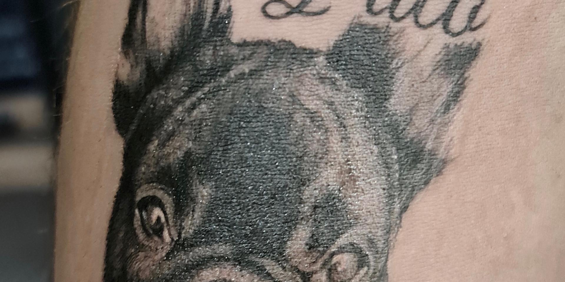 Tatouage portrait de chien
