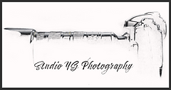 logo SYGP White BG.png
