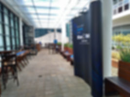 P_20190327_134213_vHDR_Auto_HP.jpg
