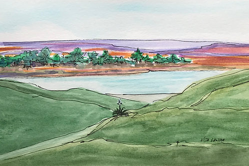 Grassy Hills mixed  watercolor and ink 9x6 50