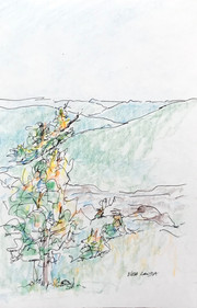 ...and the colors of autumn emerge., colored pencil and ink, 5.5x8.5, $40
