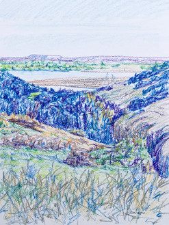 Yellowstone view #9, crayon, 9x12, $60