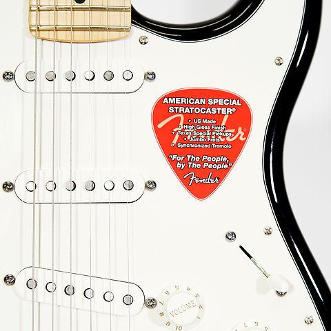 Egit Fender Strat Am. Special Detail.jpg