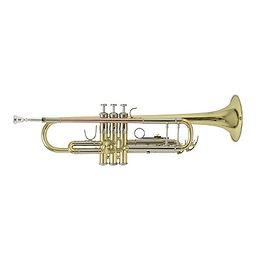 Trp Bach TR501 klein.jpg