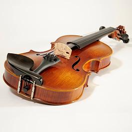 Schülerinstrument in verschiedenen Größe