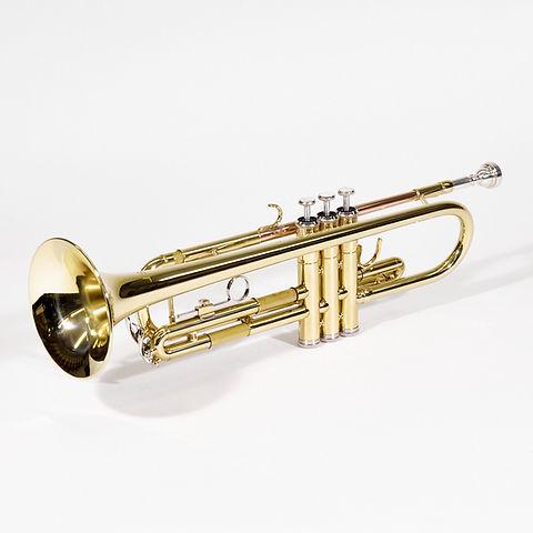 BST Trompete Trichteransicht.jpg