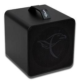 Falken 1 Akustikverstärker.jpg