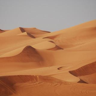 6 - arabian desert fun facts.jpg