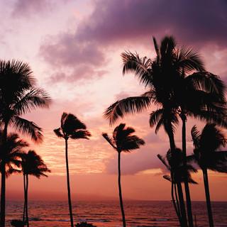 #9 hawaii culture fun facts.jpg