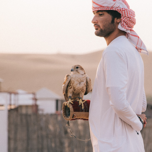 11 - why falcons are important to Emirat