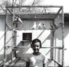 1953-PigeonCoop.jpg
