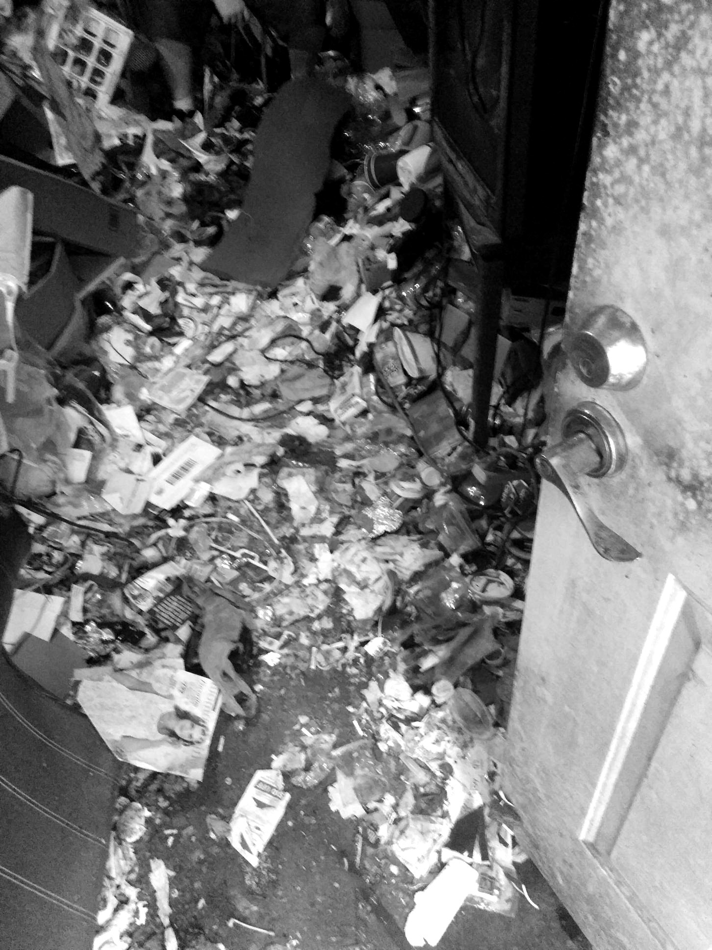 Hoarding Clean Up & Remediation