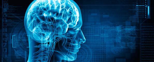 Alzheimer Espaço Funcional