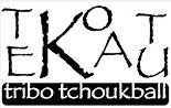 Espaço Funcional e Tchoukball Tekokatu