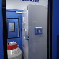 Cell bank.JPG
